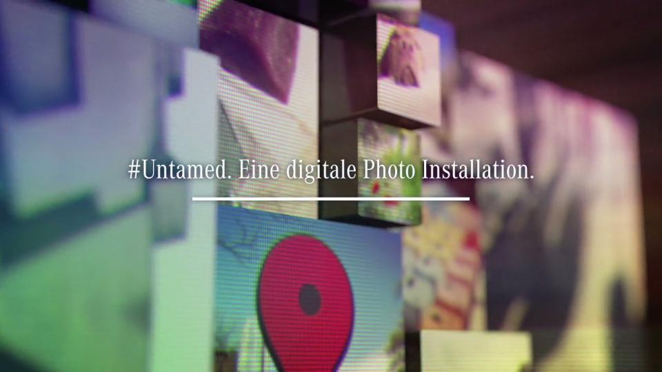 #Untamed. Eine digitale Photo Installation. (1)