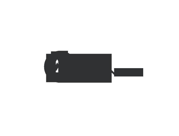 Mata Atlantica (1)
