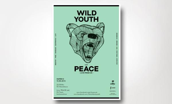 Wild Youth – Indie Konzertreihe (3)