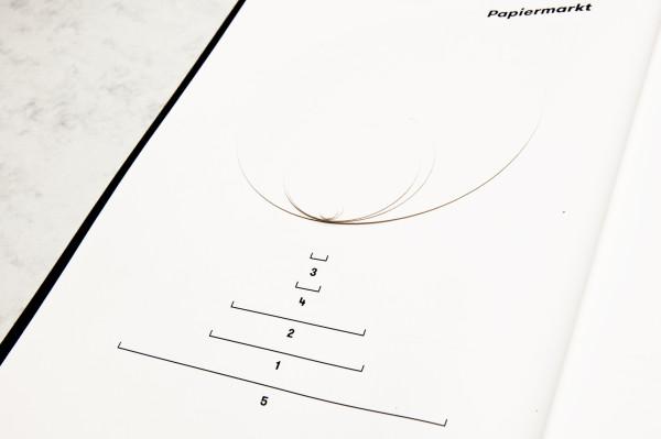 06_Tortendiagramm_Papier_Detail