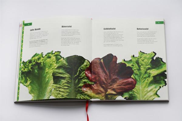 Das Bento Lunch Buch (8)