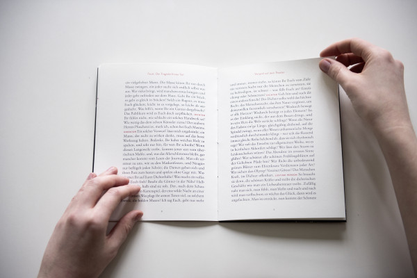 Goethes Faust. Lesen. (5)