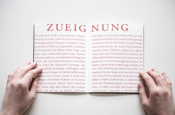 Goethes Faust. Lesen. (4)