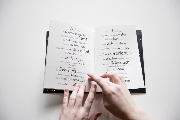 Goethes Faust. Lesen. (14)