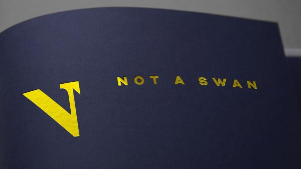 Not A Swan – Brand Identity (1)