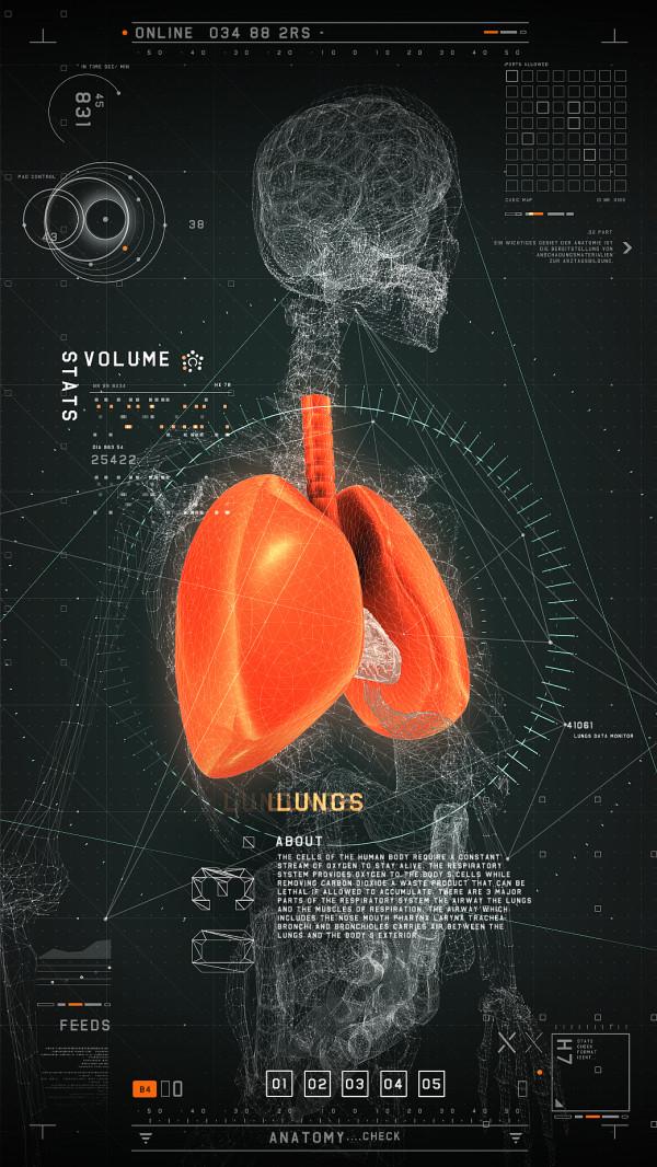 Interaktives Medizinisches Userinterface (1)