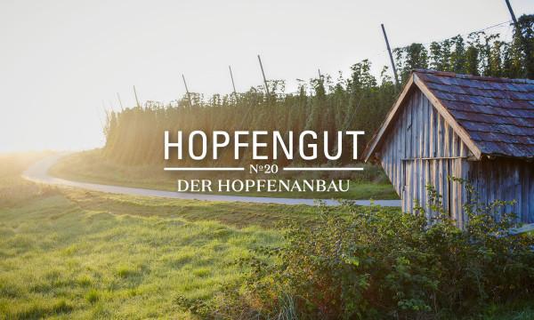 Hopfengut No20 (14)