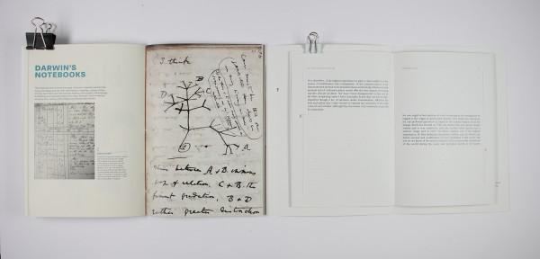 Punctuating Darwin (3)