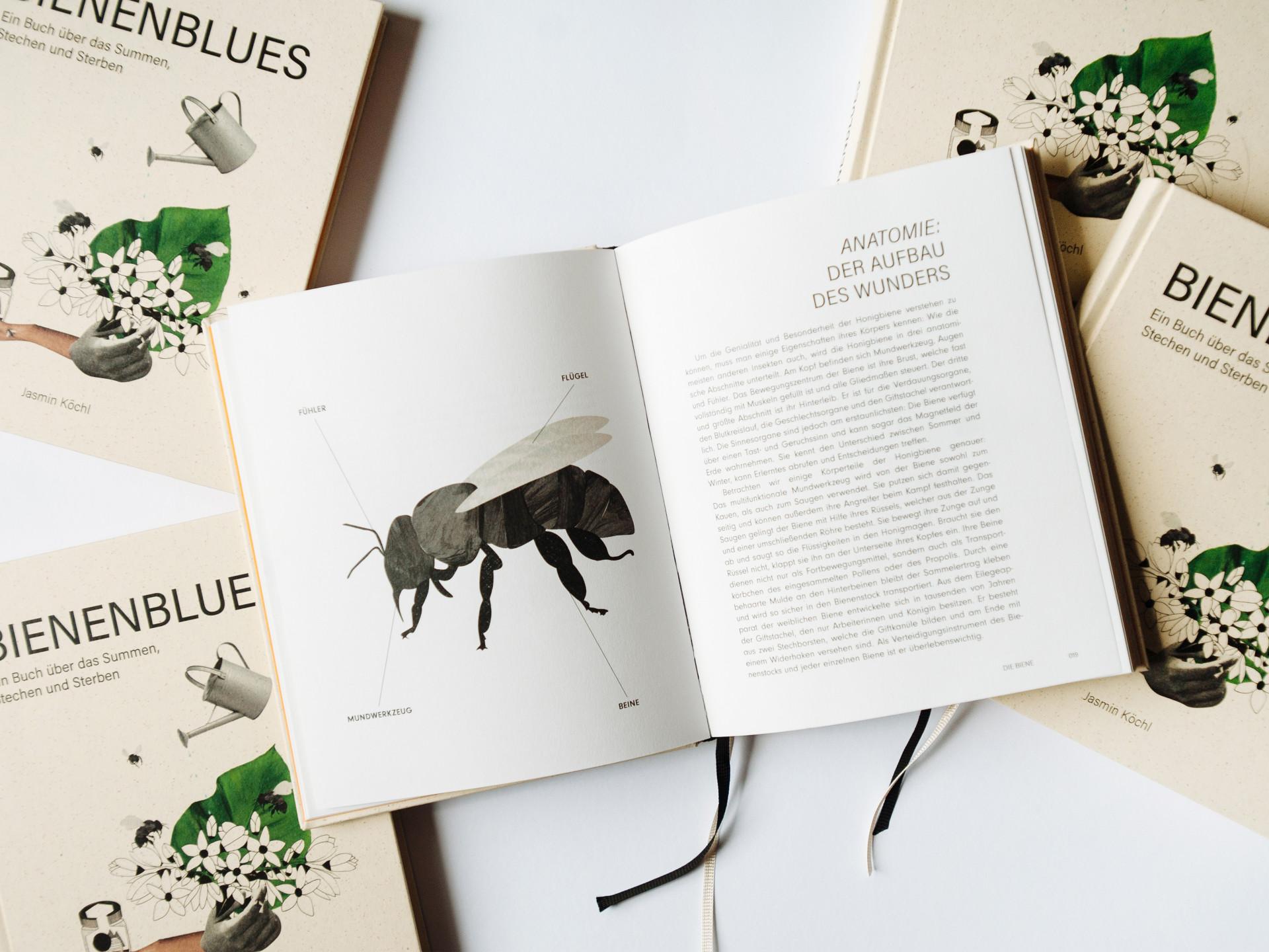 Bienenblues – Ein Buch über das Summen, Stechen und Sterben