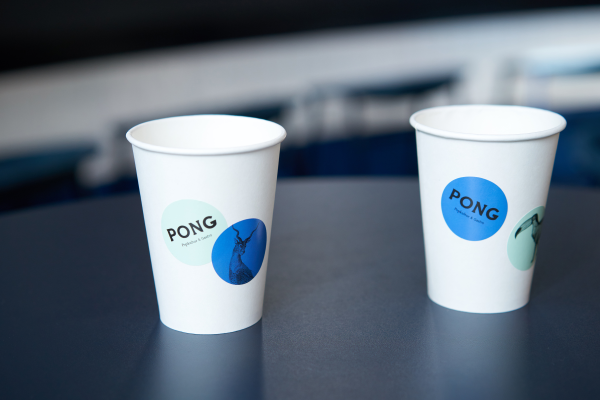 Pong (4)