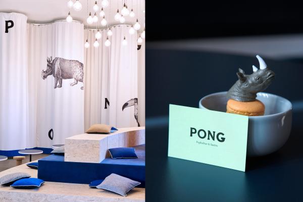Pong (5)