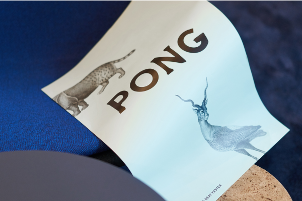 Pong (7)
