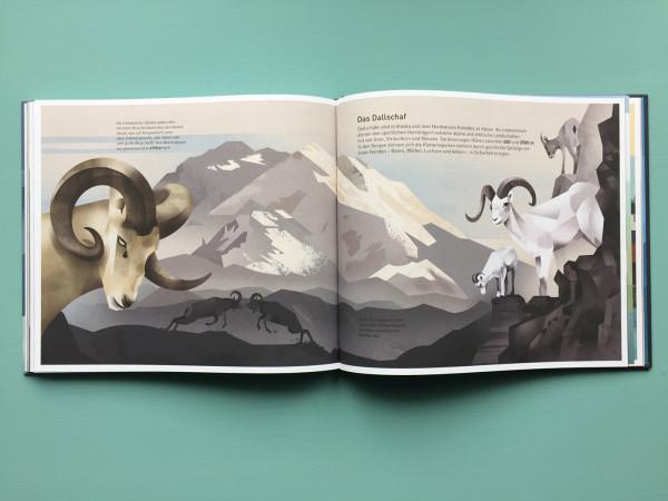 Die Welt der Berge (11)