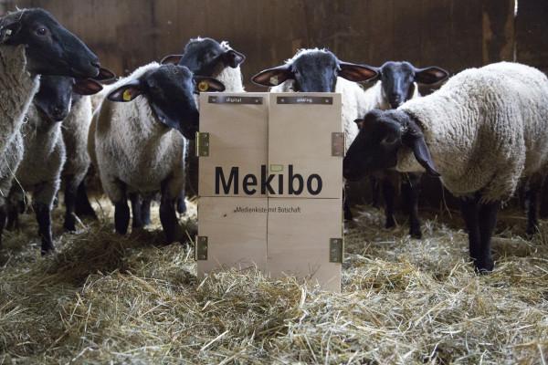 Mekibo – Die Medienkiste mit Botschaft (7)