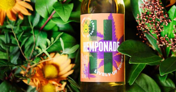 Hemponade – Branding (2)