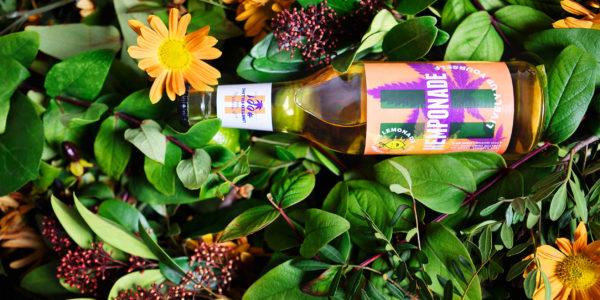 Hemponade – Branding (1)