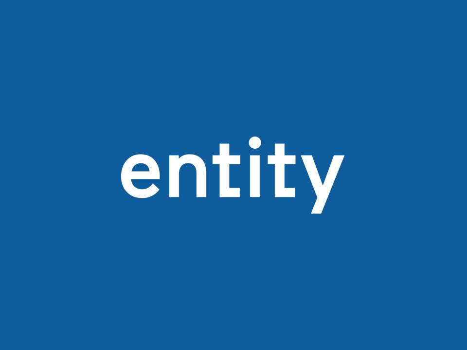 Entity (1)