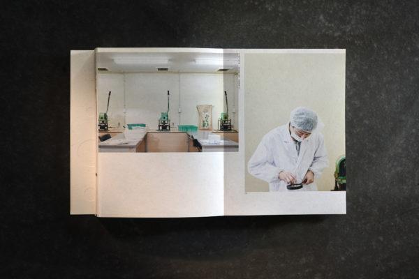 Made in Fukushima (5)