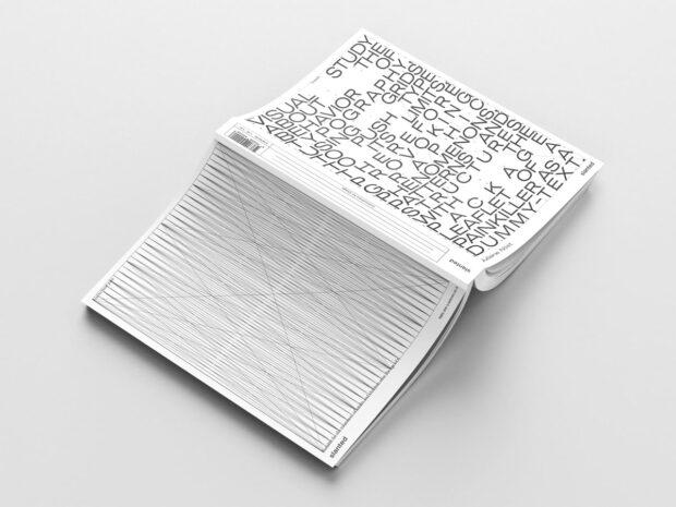 Teasing Typography (14)