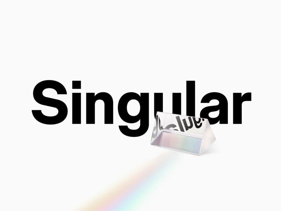 Neue Singular (1)