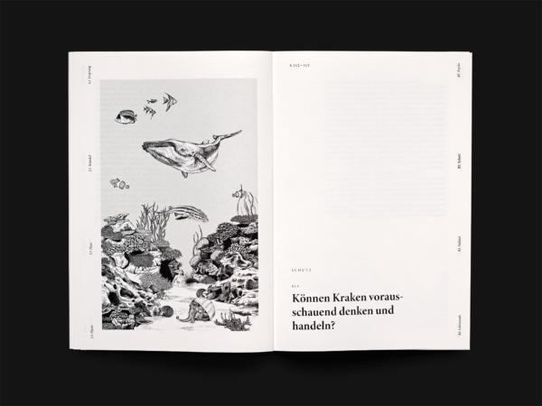 Kanaloa – Ein Wesen aus einer anderen Welt? (8)