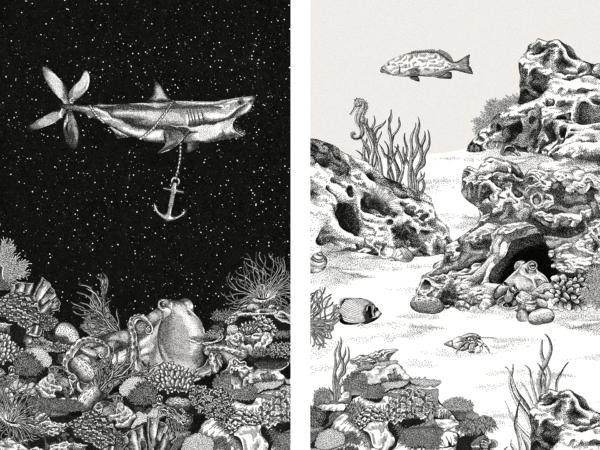 Kanaloa – Ein Wesen aus einer anderen Welt? (3)