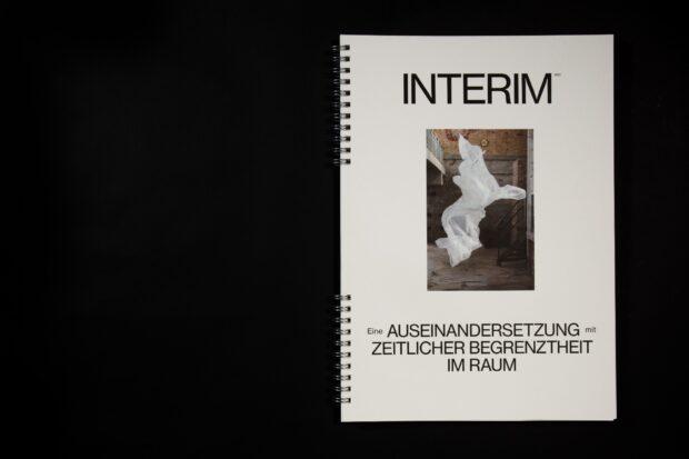 Interim (1)