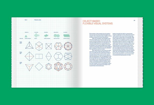 Flexible Visual Systems (13)