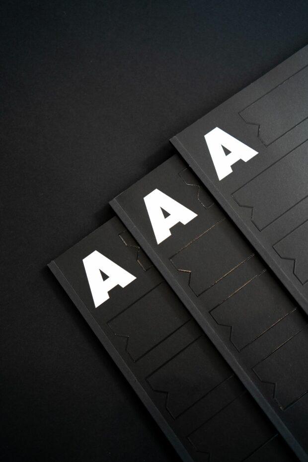 Alphartis – Imagebroschüre (2)