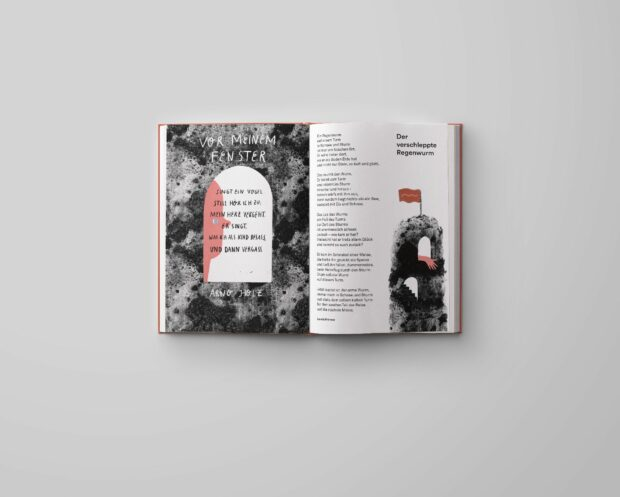 Das große Büchergilde Gedichtbuch (3)